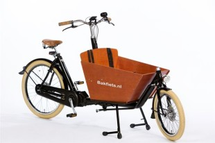 cargobike-short-cruiser-steps
